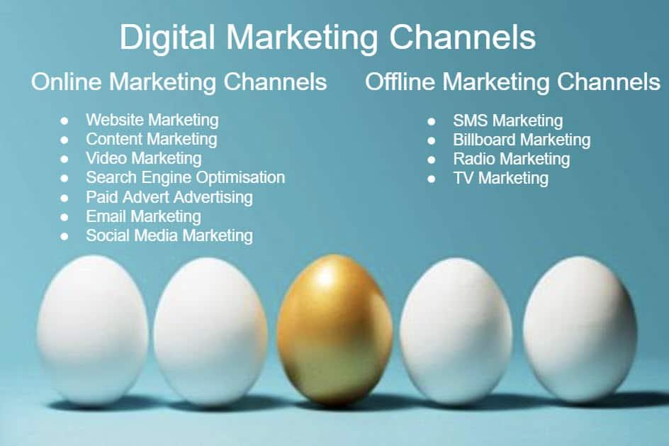 digital marketing channels blue dolphin website design Website Marketing Guide