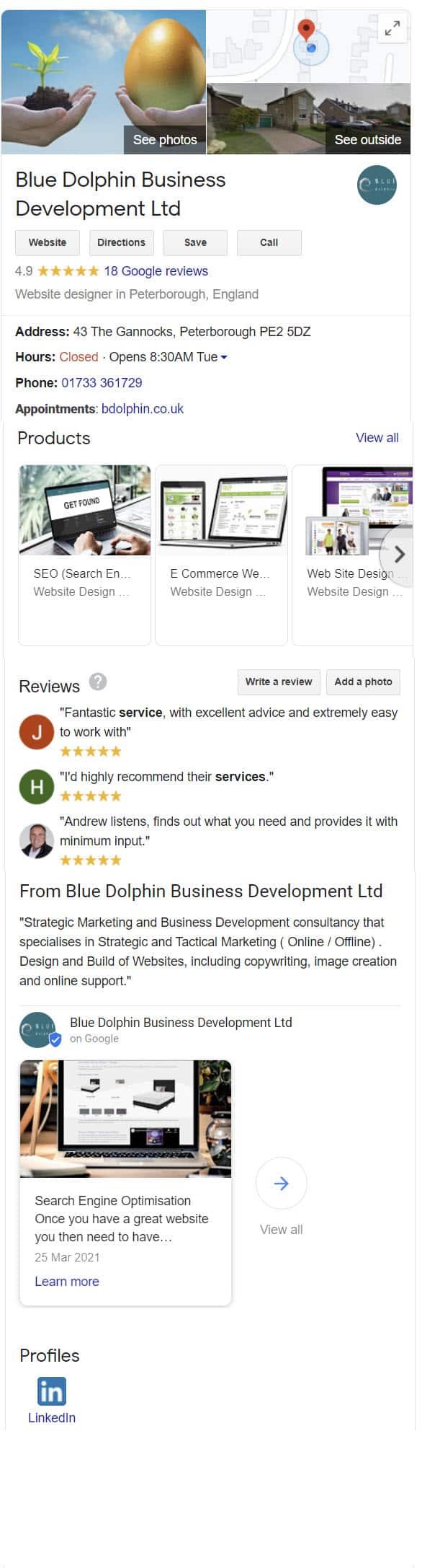google my business profile blue dolphin website design